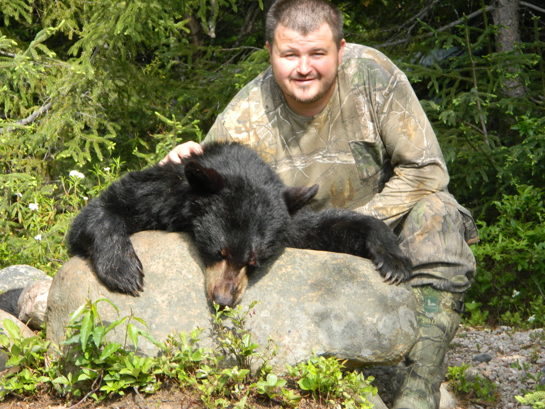 bear, hunting, bow and arrow, used bows, used bow, archery,