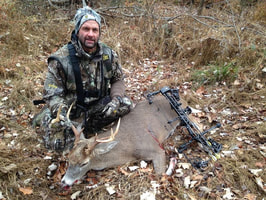 buck, deer, used bows, clear archery, bow and arrow